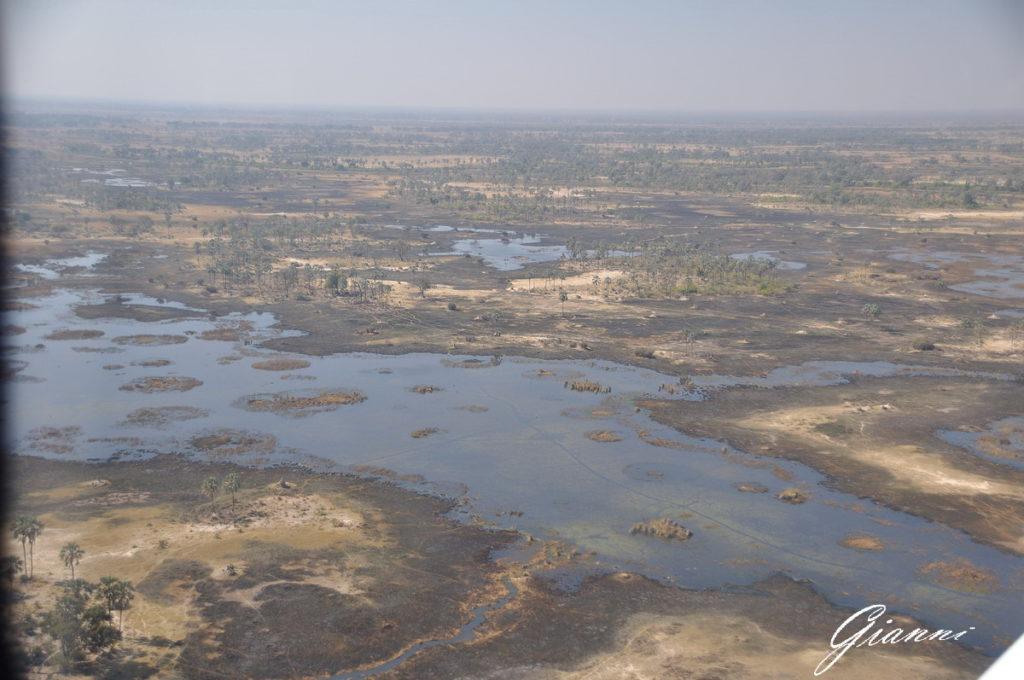 Isolotti dell'Okavango