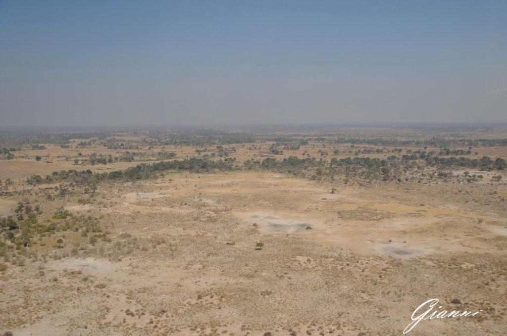 Il bush siccitoso