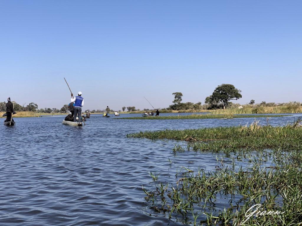 Okavango in mokoro