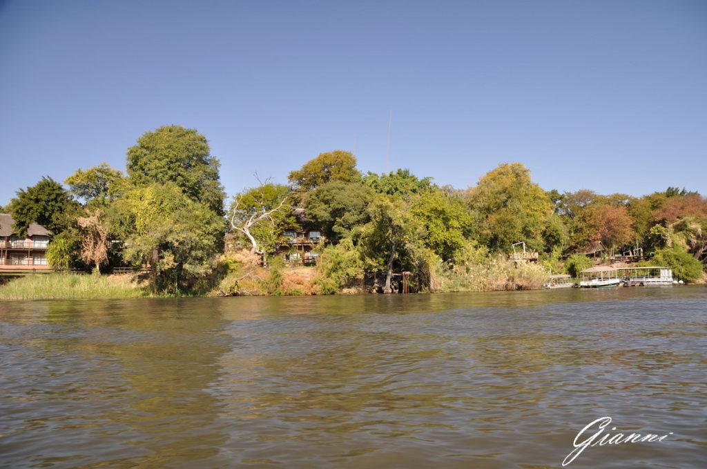 Il bush sulle rive del fiume