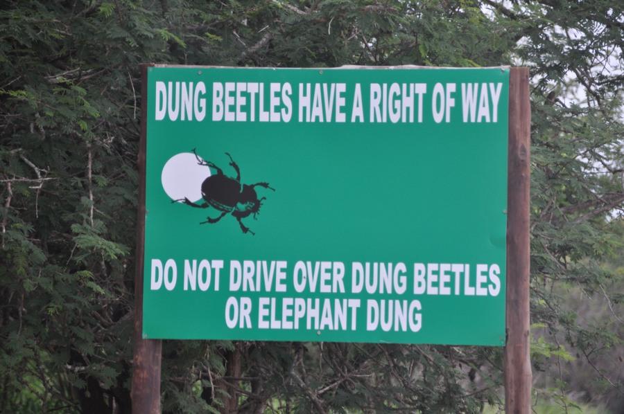 Cartello all'ingresso del Kruger