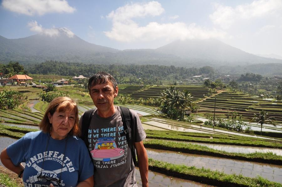 Le Risaie Di Bali Patrimonio Dell Unesco Nonni Avventura
