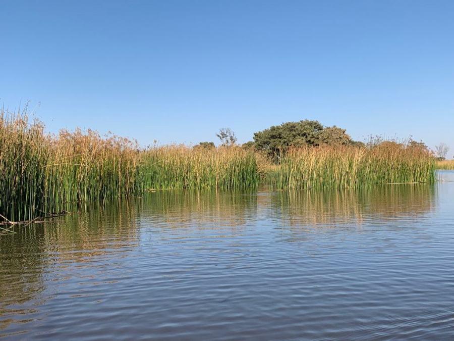 Sul Delta dell'Okavango