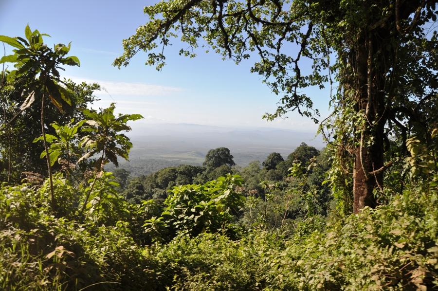 Panorama in Tanzania