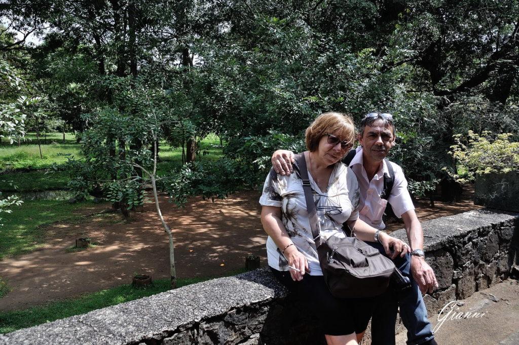 Viaggio di nozze in Sri Lanka
