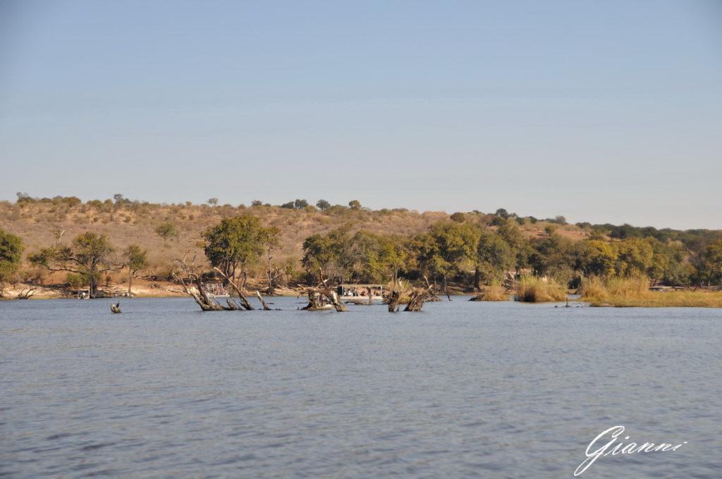 Il fiume Chobe