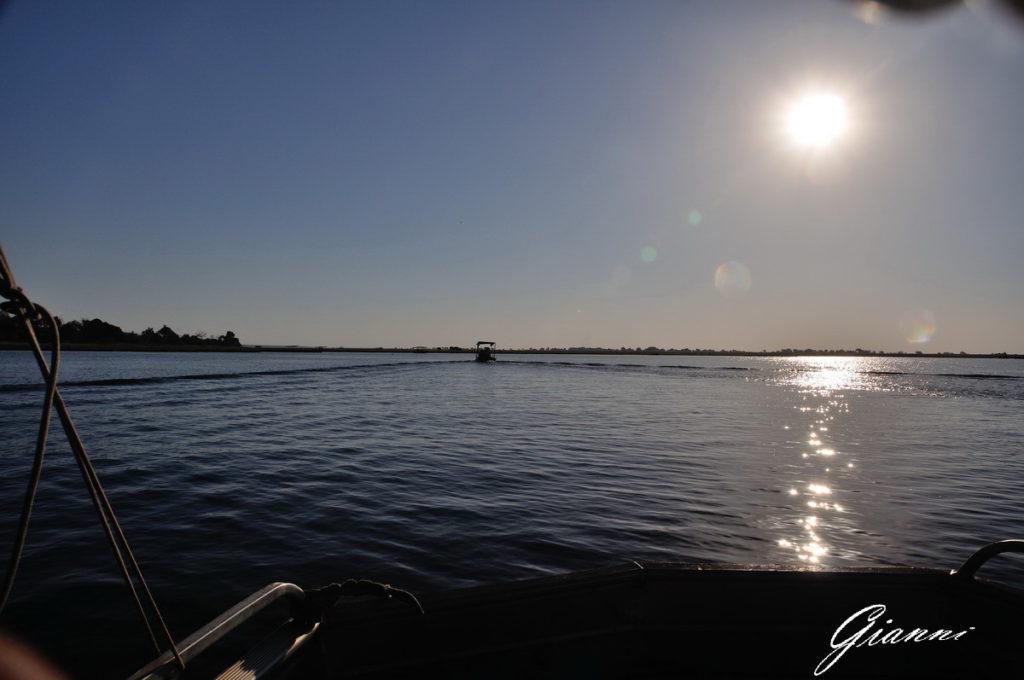 fiume Chobe