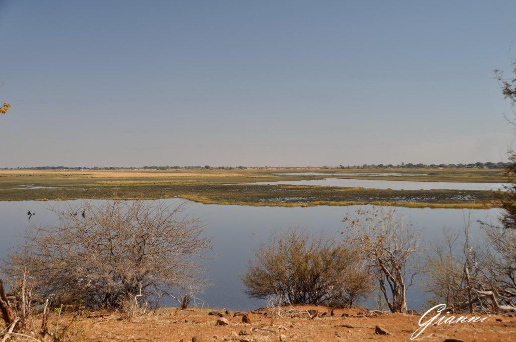 Isolotti del fiume Chobe