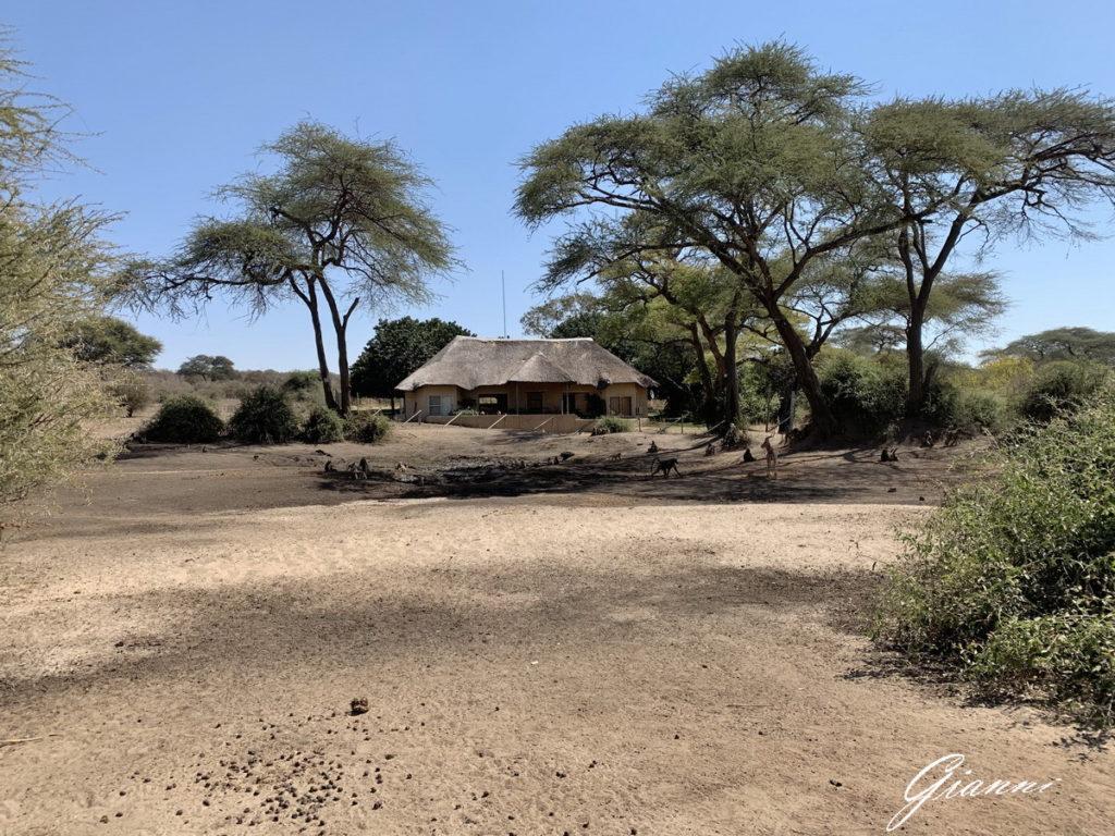 Una casa nel bush