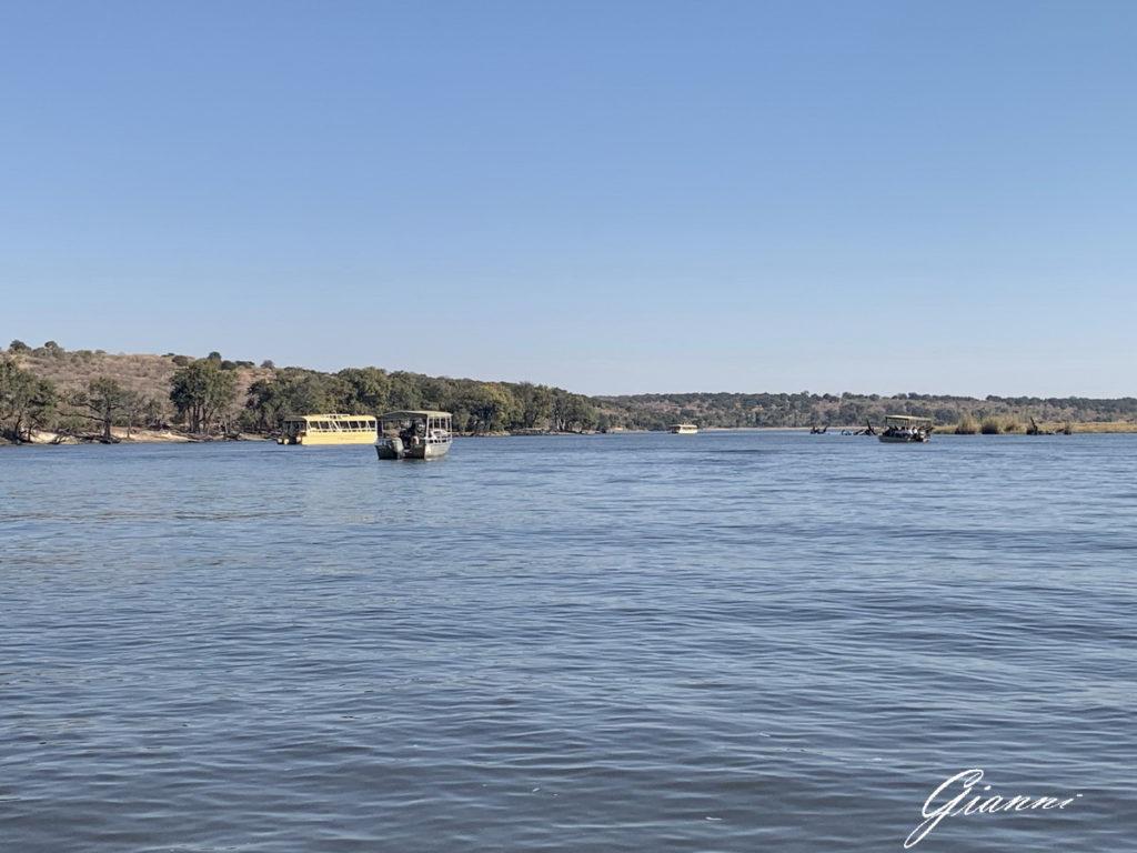 In barca sul Chobe