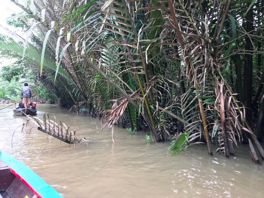Vietnam Il delta del Mekong