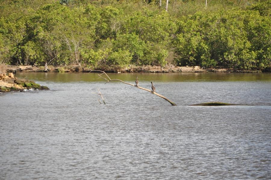 Navigazione sul fiume Chavon
