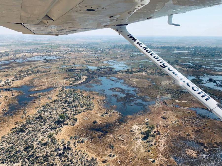 Okavango dall'aereo