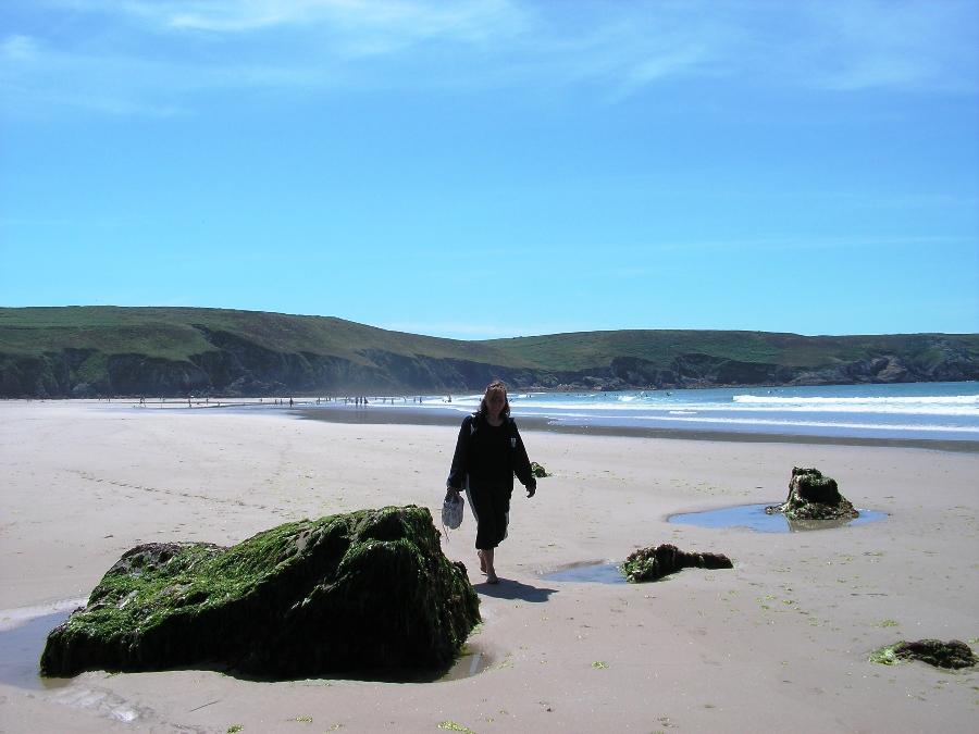 Cose da vedere in Bretagna Spiaggia con la bassa marea