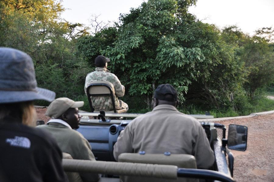 Safari nel Kruger National Park