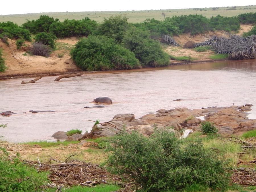 Safari a Tsavo Est