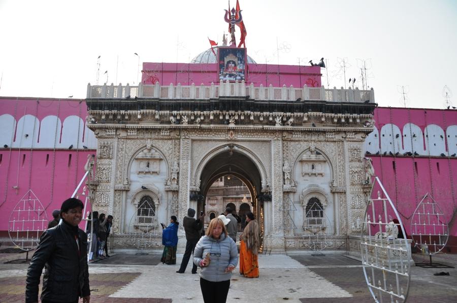 Tempio dei topi di Karni Mata