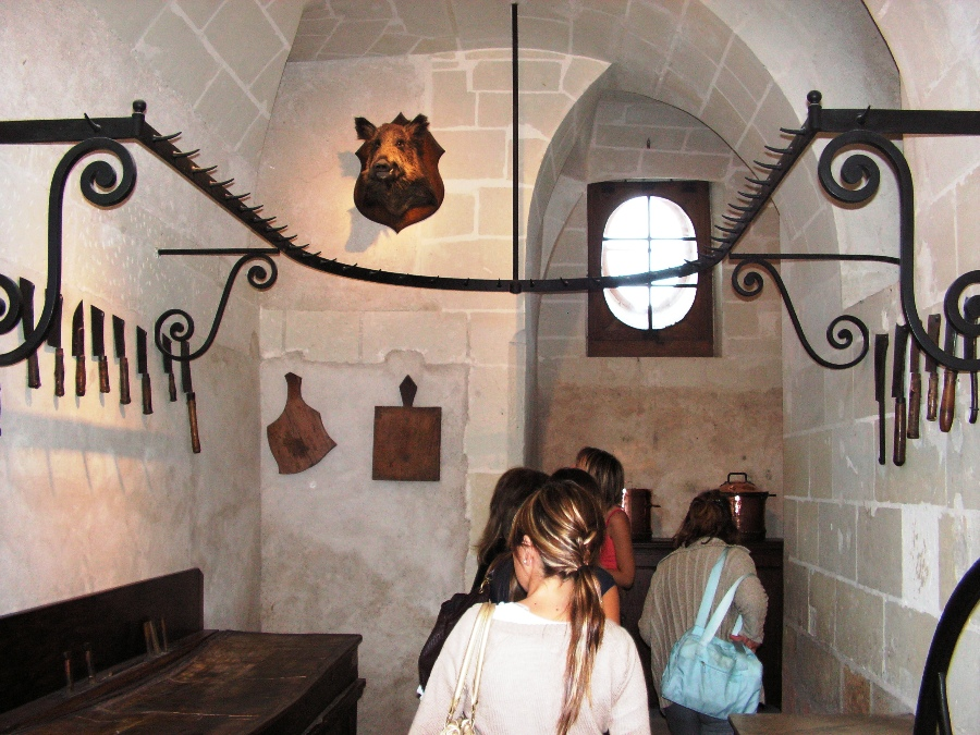 Visita ai Castelli della Loira