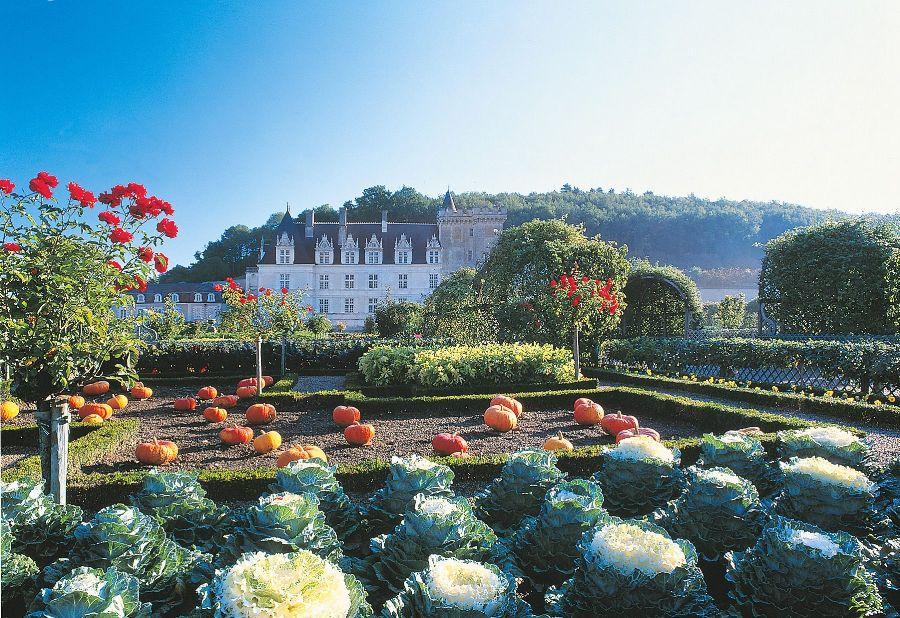 Castello di Villandry Orto-giardino