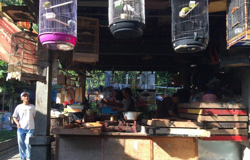 Cosa vedere a Yogyakarta