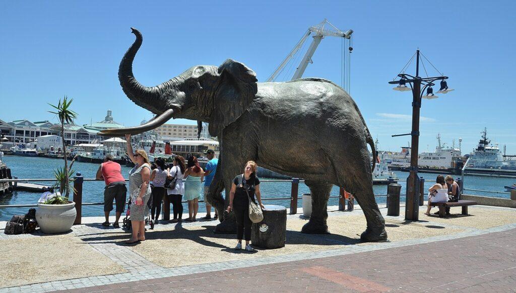 Sul Waterfront di Cape Town
