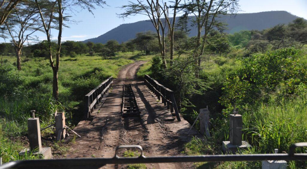 Un ponte nel Parco del Serengeti