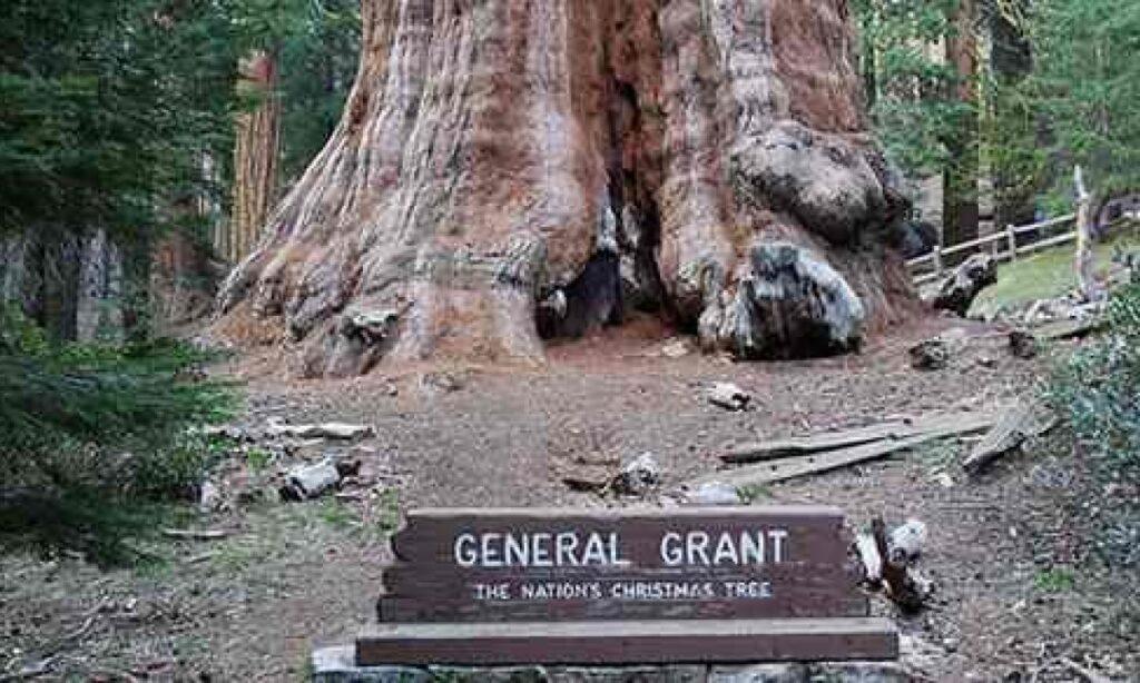 Il Generale Grant